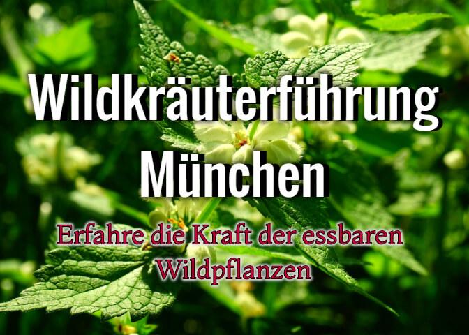 Philip Kunisch - Kräuterexperte und Fermentationskünstler