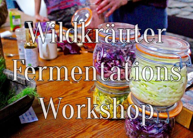 Fermentation Wildkräuter Ernährungsberatung Coaching