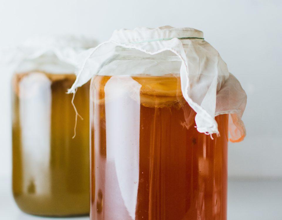 10 Gründe für Kombucha-mehrGesundheit