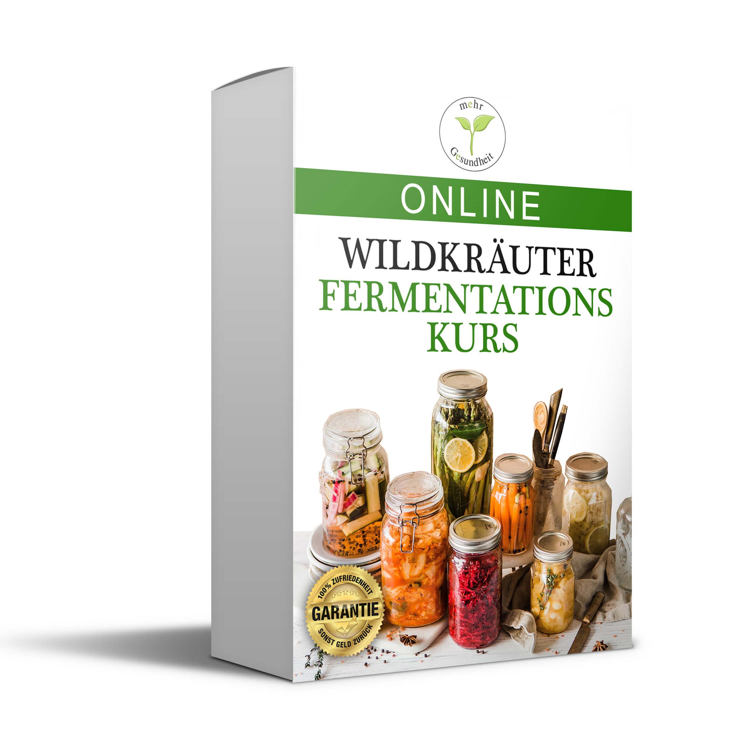 Lerne online wie Du mit Wildkräutern fermentierst
