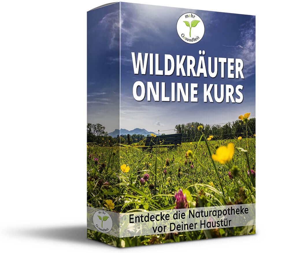 Mockup-Wildkräuter-Online-Kurs